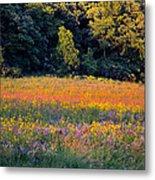 Flowers In The Meadow Metal Print