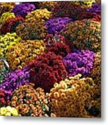 Flowers Near The Grand Palais Off Of Champ Elysees In Paris France   Metal Print