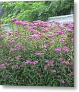 Flowers Of Boston Metal Print