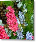 Flowers Of Pink And Blue Metal Print