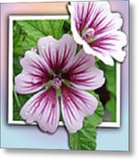 Flowers Out Of Bounds Metal Print
