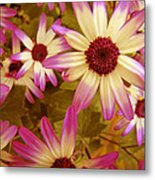 Flowers Pink And White Metal Print