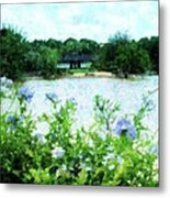 Flowers Point Of View Metal Print