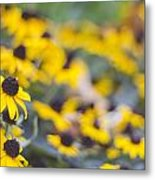 Flowers To Remember Metal Print