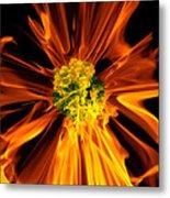 Flowery Flames Metal Print