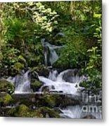 Flowing Creek In Spring  Metal Print