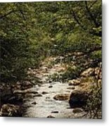 Flowing Prose Metal Print by Anthony Bean