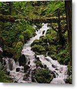 Flowing Stream In Spring Metal Print
