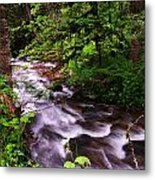 Flowing Through The Forest Metal Print