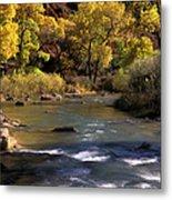 Flowing Through Zion National Park Metal Print