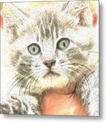 Fluffy Kitten Metal Print