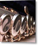 Flute Metal Print