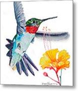 Da177 Flutter By Daniel Adams Metal Print