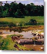 Fluvial Landscape Metal Print
