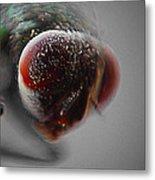 Fly On The Wall Digital Art Metal Print