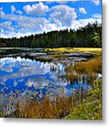 Fly Pond In The Adirondacks II Metal Print