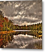 Fly Pond Marsh II Metal Print