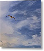 Fly To Your Tomorrow Metal Print