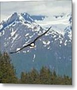 Flying Amongst The Mountains Metal Print