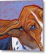 Flying Basset Hound Metal Print