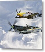 Flying Brothers Metal Print