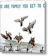 Flying Ducks And A Friends Quote Metal Print