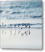 Flying Free Metal Print by Jenny Rainbow