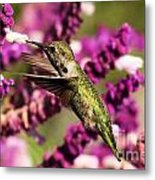 Flying In Lunch Metal Print