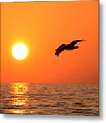 Flying Into The Sun Metal Print