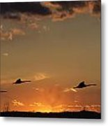 Flying Into The Sunset Metal Print