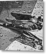 Flying Lady Hood Ornament In B And W Metal Print