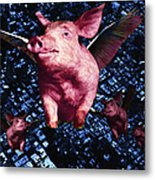 Flying Pigs Over San Francisco - Square Metal Print