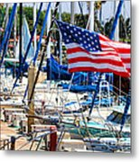 Flying Proud By Diana Sainz Metal Print