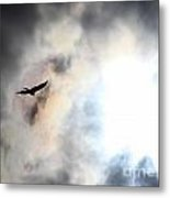Flying Towards The Light Metal Print