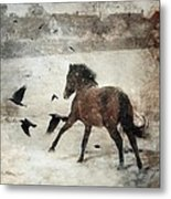Flying With The Crows Metal Print