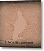 Focus Like A Lazer Beam Metal Print