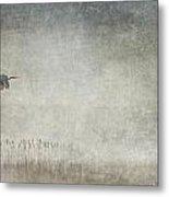 Fog And Blue Heron Metal Print