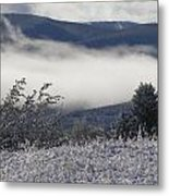 Fog And Frost Metal Print