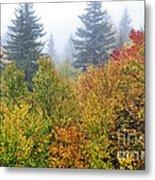 Fog Fall Day Metal Print
