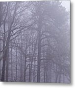 Fog In The Smoky Mountains Metal Print