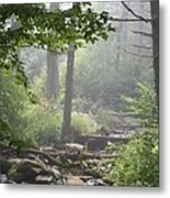 Fog In The Wilderness Metal Print