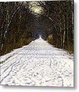 Fog On The Winter Macomb Orchard Trail Metal Print