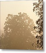 Fog Over Countryside Metal Print by Olivier Le Queinec