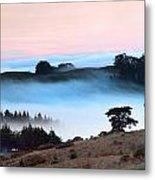 Fog Over The Bodega Coastline In California Metal Print
