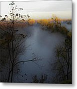 Fog Photo Metal Print
