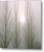 Fog Poplars 2 Metal Print