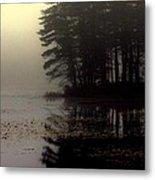 Foggy Bog Sunrise Metal Print