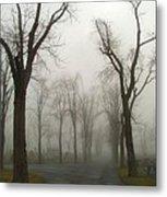 Foggy Cemetery Road Metal Print