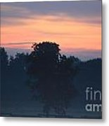 Foggy Coloured Morning Metal Print