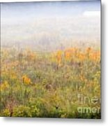 Foggy Country Autumn Morning Metal Print